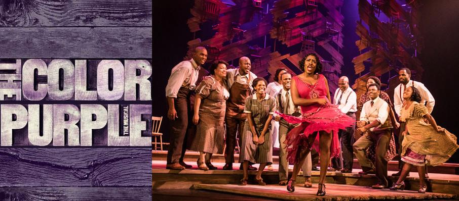 The Color Purple at Adler Theatre